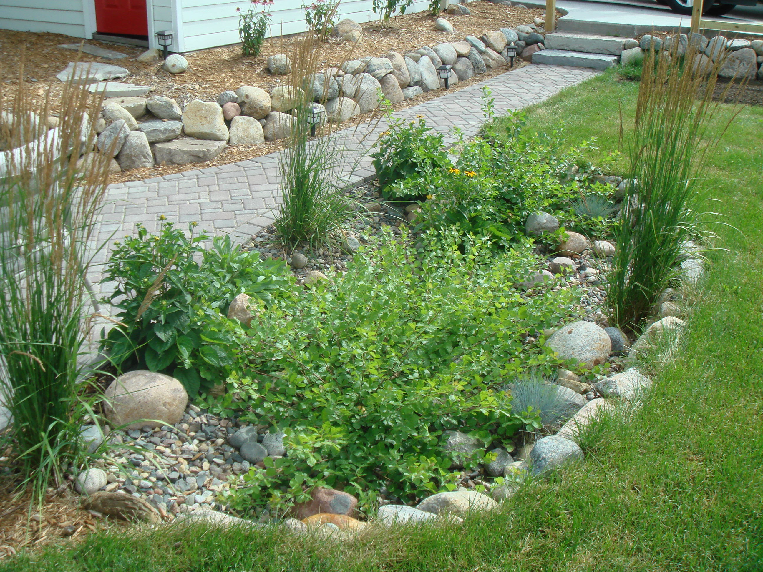 7 better ways to save water in your home landscapes for Home rain garden design