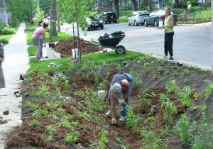 Planting2